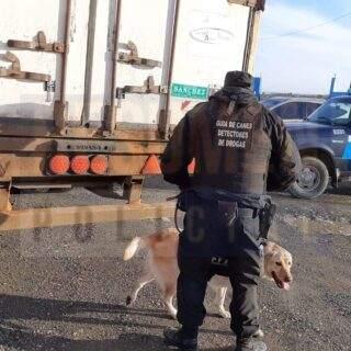 Policía Federal comenzó a realizar controles periódicos