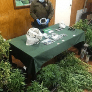 """PTA. ARENAS: Acusado por tráfico de marihuana: """"Yo me dedico a la cocina, a la repostería cannábica"""""""